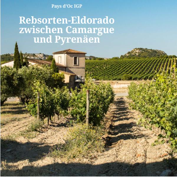 Pays d'Oc IGP Weinwirtschaft 2021 - Beitrag